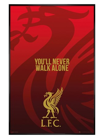 Gloss Black Framed With A Liverbird Upon My Chest! - Liverpool FC