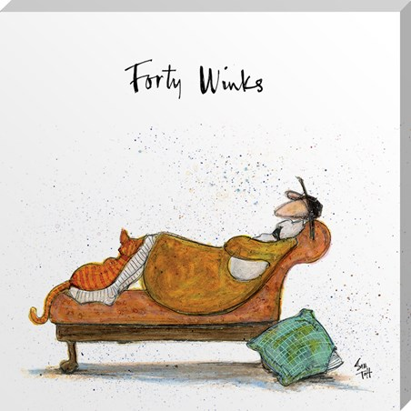 Forty Winks - Sam Toft