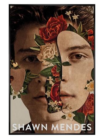 Gloss Black Framed Flowers - Shawn Mendes