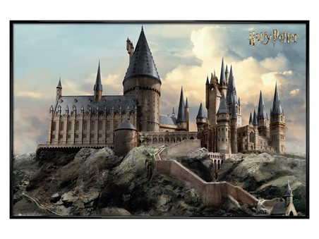 Gloss Black Framed Hogwarts Day - Harry Potter