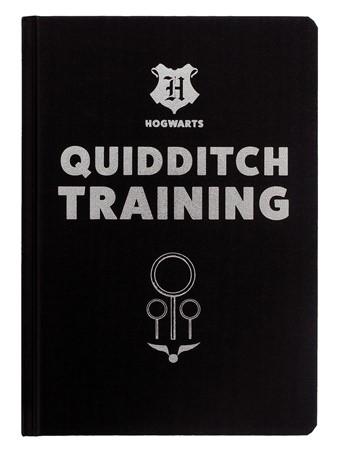 Quidditch Training - Harry Potter