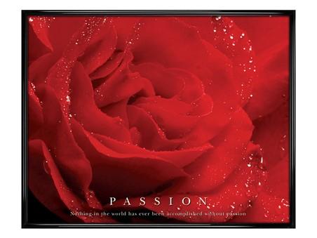 Gloss Black Framed Rose Bloom - Passion