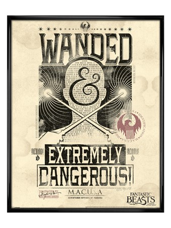 Gloss Black Framed Extremely Dangerous - Fantastic Beasts