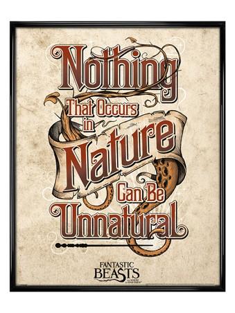Gloss Black Framed Unnatural - Fantastic Beasts