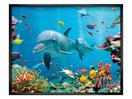 Gloss Black Framed Dolphin - Tropical Ocean