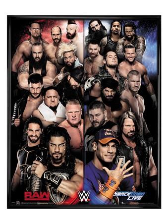 Gloss Black Framed Raw VS Smackdown - WWE