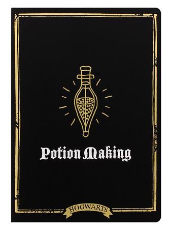 Hogwarts Potion Making - Harry Potter