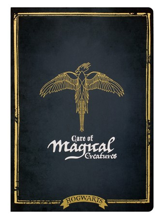 Hogwarts Care Of Magical Creatures - Harry Potter