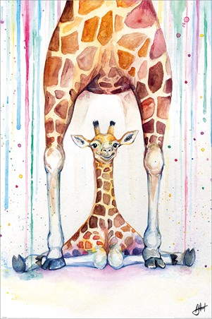 Gorgeous Giraffes - Marc Allante