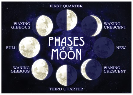 Moon Phases - Late Night Lunar