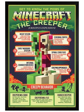 Black Wooden Framed Creepy Behaviour - Minecraft