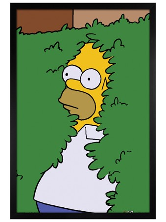 Black Wooden Framed Homer Bush - The Simpsons