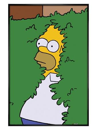 Gloss Black Framed Homer Bush - The Simpsons