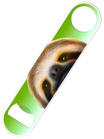 Sloth - Inquisitive Creatures