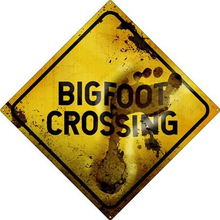 Big Foot Crossing - Sasquatch Warning