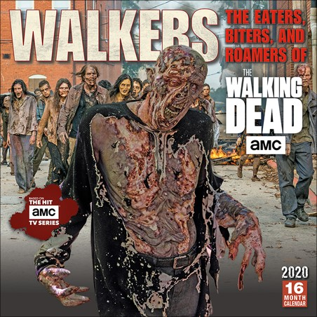 Walkers: The Eaters, Biters, and Roamers - The Walking Dead