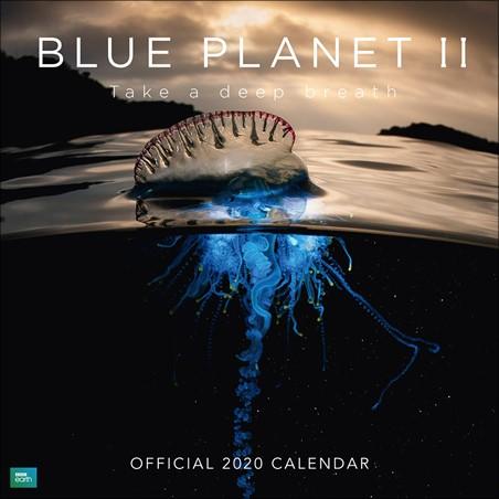 Take A Deep Breath - BBC Blue Planet II