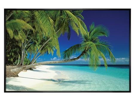 Gloss Black Framed Maldives Beach and Sea, Palm Trees on a Tropical Island Paradise