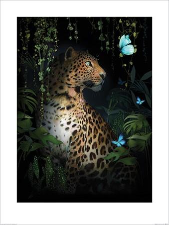 Leopard - Summer Thornton