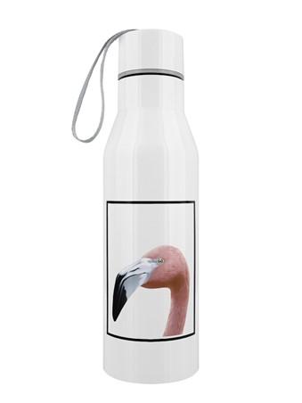 Funky Flamingo - Inquisitive Creatures