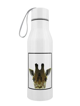 Giraffe - Inquisitive Creatures