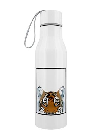 Tiger - Inquisitive Creatures