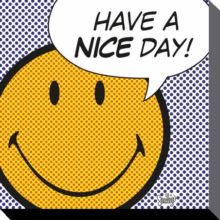 Image result for have a nice day smiley
