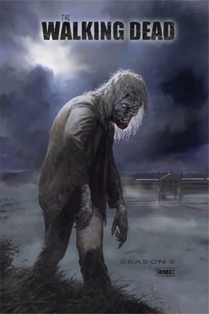 Framed Flesh Eating Walker! - The Walking Dead