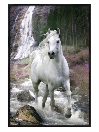Gloss Black Framed Horse in a Waterfall - Bob Langrish