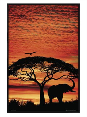 Gloss Black Framed Safari Silhouette - African Sunset
