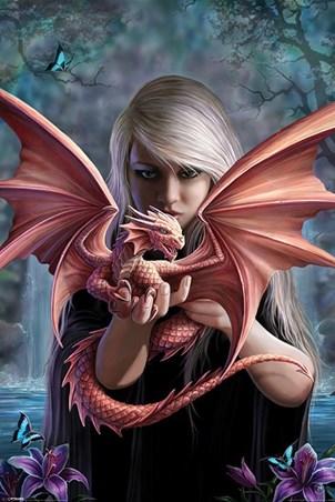 Dragonkin - Anne Stokes