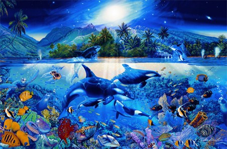 Dolphins Posters Prints Amp Wall Murals Buy Online At