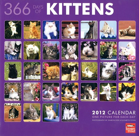 Purrfect Pets - 366 Days of Kittens