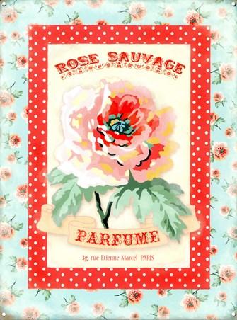 Framed Rose Sauvage - Wild Rose