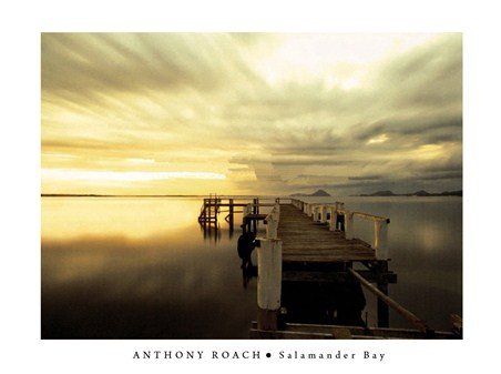 Salamander Bay - Anthony Roach