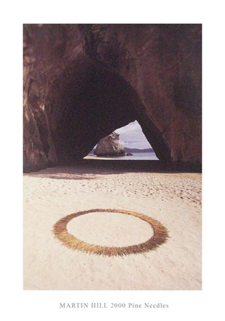 Framed 2000 Pine Needles - Martin Hill