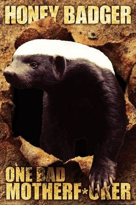 One Bad Mother F*cker - Honey Badger