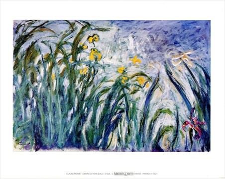 Campo Di Fiori Gialli - Claude Monet