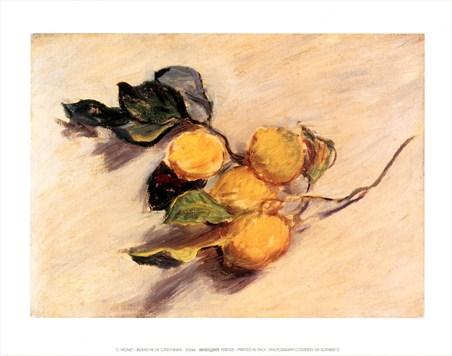 Branche de Citronnier - Claude Monet
