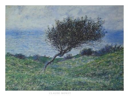 Sea Coast at Trouville - Claude Monet