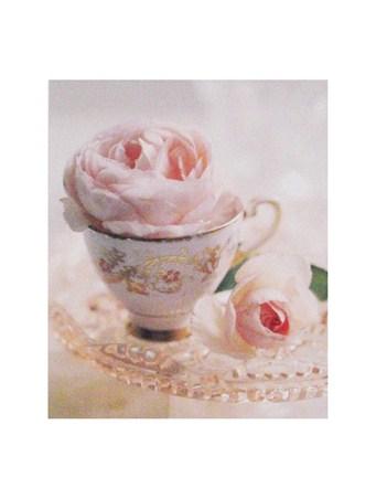Pale Pink II - Lina Ricci