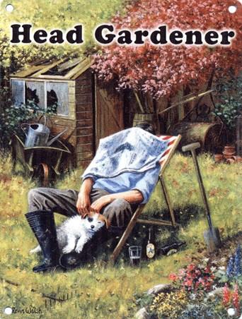 Head Gardener - Kevin Walsh
