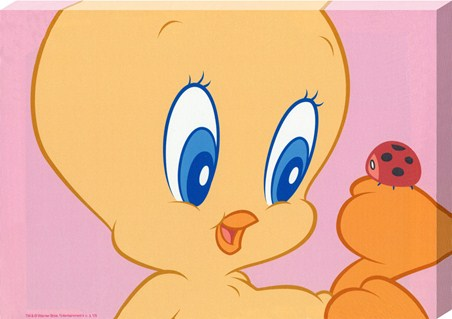 Tweety Pie Makes A New Friend - Baby Looney Tunes