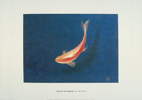 The Goldfish - Lincoln Seligman