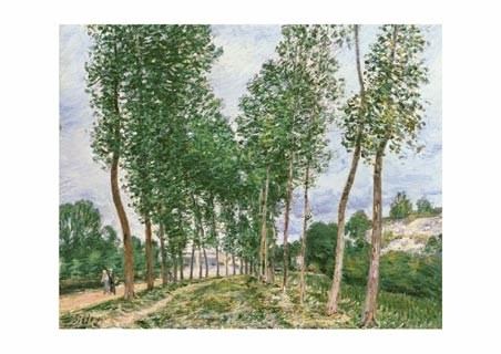 Populars by the Loing - Alfred Sisley