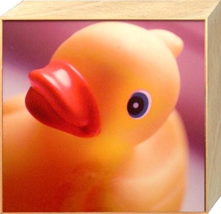 Big Yellow Rubber Duck - Ian Winstanley
