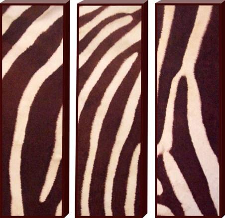 Animal Art Trio - Animal Print