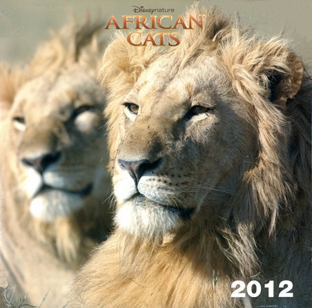 Kings of the Wild - African Cats