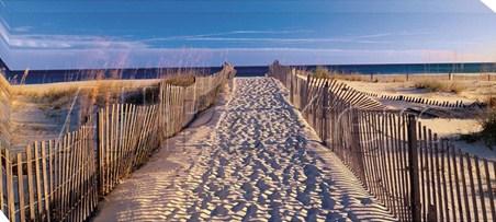 Pathway to the Beach - Joseph Sohm