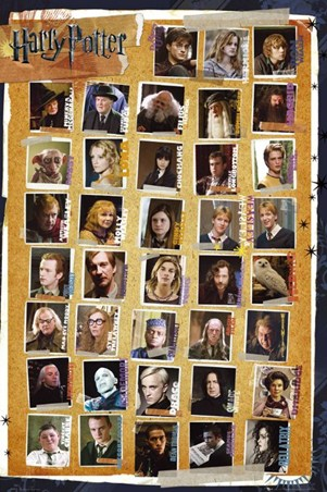 Framed Character Montage - Harry Potter